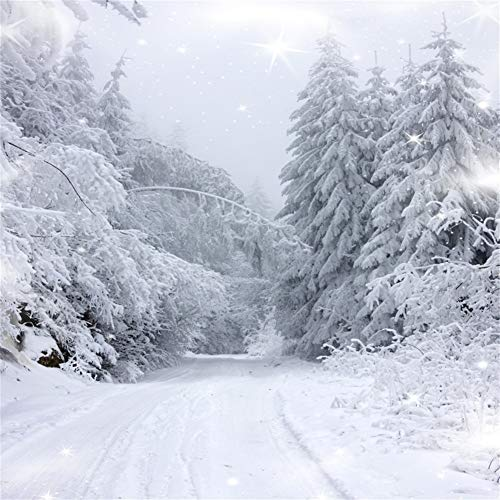 AOFOTO 8x8ft Snow Covered Pine Trees Backdrop White Christmas Fairy Winter Forest Landscape Photography Background New Year Holiday Snowfield Park Nature Scenery Photo Studio Props Vinyl -