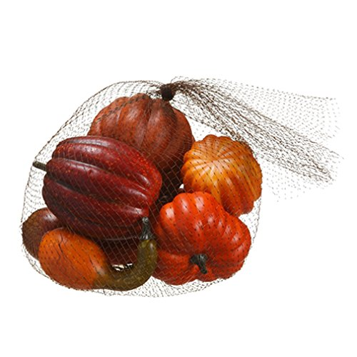 6''Hx9''W Artificial Bagged Assorted Pumpkin & Gourd -Orange/Brick (pack of 6) by SilksAreForever