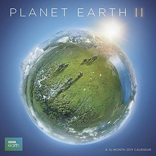2019 Planet Earth 2019 Wall Calendar, Landscapes by ACCO Brands