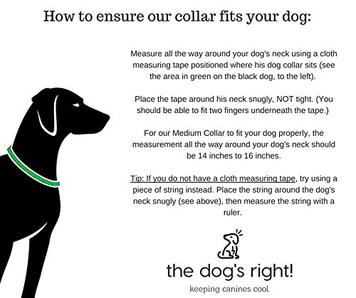 Dog neck sizing (Source: The Dog's Right, Amazon)