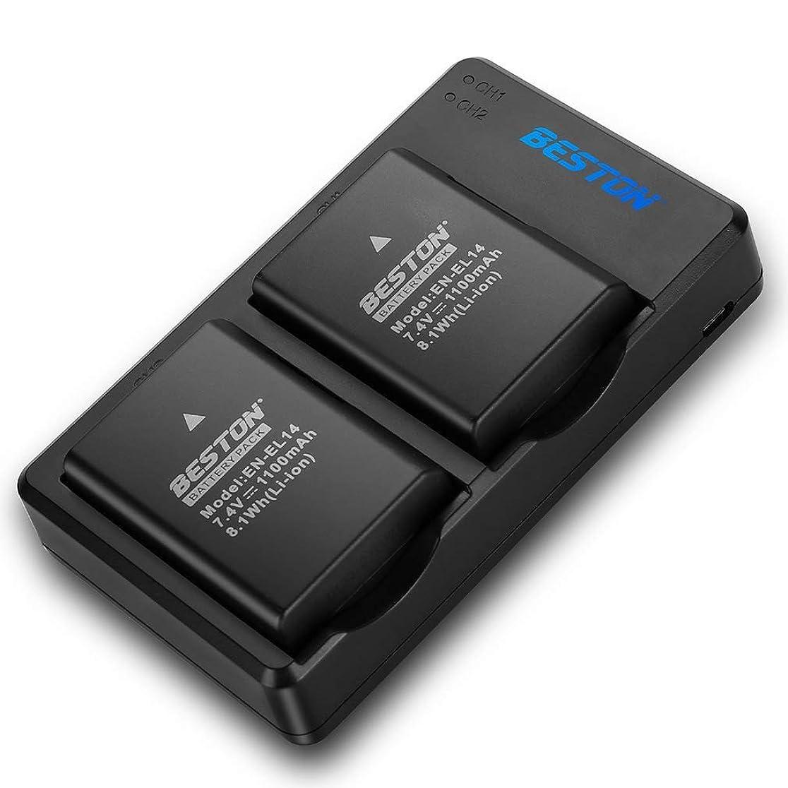 インターネットアーティストフラッシュのように素早くパナソニック バッテリーパック ルミックス DMW-BLF19