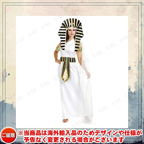 [Nefertiti Costume - Medium - Dress Size 8-10] (Nefertiti Halloween Costumes)