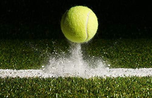 Tennis Grass Court Wimbledon Cover Black Ballpoint Pen Student Gift #14656