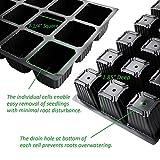 Gardzen 10-Set Garden Propagator Set, Seed Tray