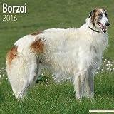 Borzoi Calendar - Breed Specific Borzoi Calendar - 2016 Wall calendars - Dog Calendars - Monthly Wall Calendar by Avonside