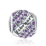 FOREVER QUEEN February Birthstone Charms for Pandora Charms Bracelet- 925 Sterling Silver Bead Openwork Charms, Happy Birthday Charms for Bracelet and Necklace FQ0004-2