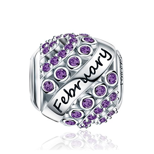 (FOREVER QUEEN February Birthstone Charms for Pandora Charms Bracelet- 925 Sterling Silver Bead Openwork Charms, Happy Birthday Charms for Bracelet and Necklace)