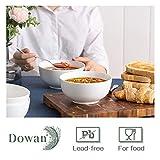 DOWAN Ceramic Soup Bowls, Cereal Bowl, 22 Ounce