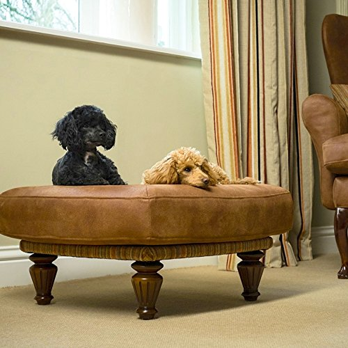 Berkeley-Cole-Country-Classic-Luxury-Dog-Bed-for-Small-DogsCats