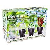 Covuno Greenhouse in a Box Kit for Cherry Tomatoes - 4 Mini Greenhouse Pots - Ideal Gift - Sits on Window Sill - Great for Urban Gardening