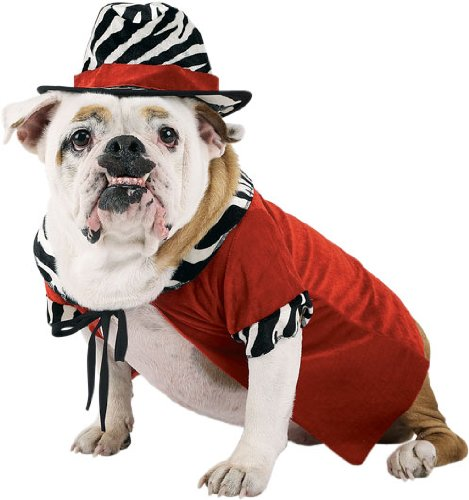 Dog Pimp Halloween Costume (Medium)