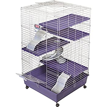 My First Home Multi-Level Cage with Casters, 24 by 24-Inch
