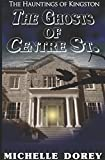 The Ghosts of Centre Street: A Haunting of Kingston (The Hauntings of Kingston)