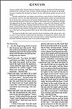 NIV, Holy Bible, Larger Print, Paperback