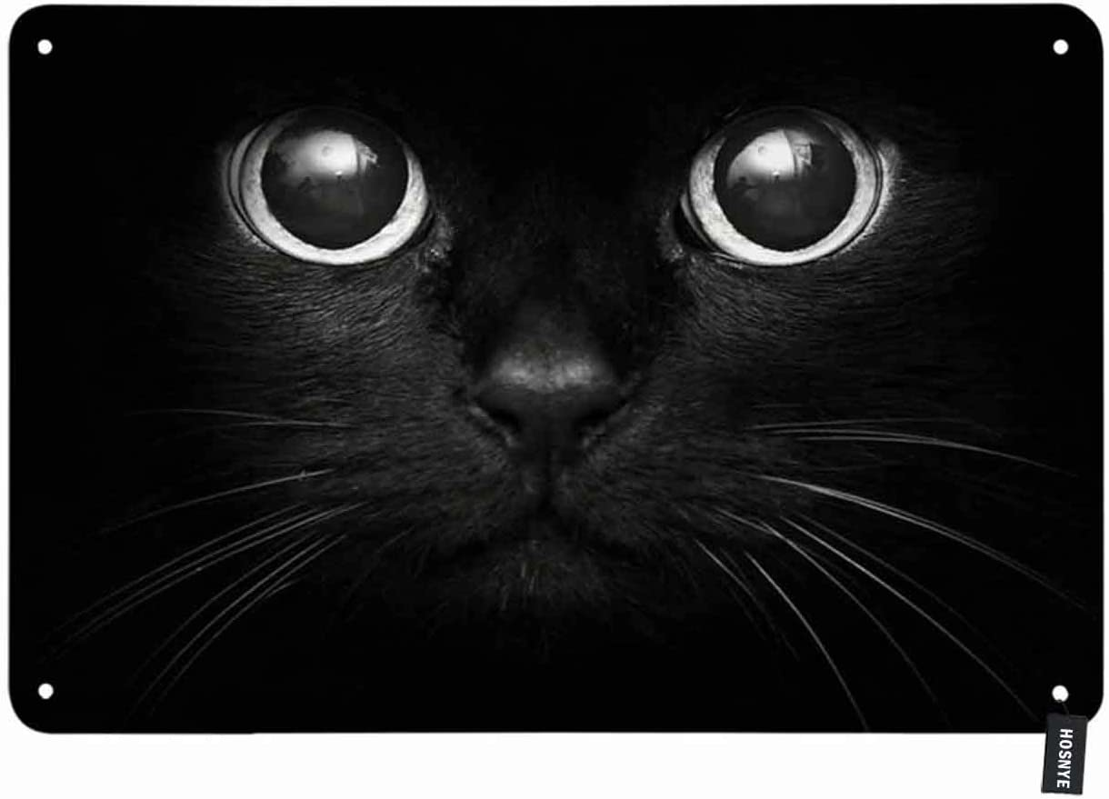HOSNYE Black Cat Tin Sign Cool Cat Head on Black Background Vintage Metal Tin Signs for Men Women Wall Art Decor for Home Bars Clubs Cafes 8x12 Inch