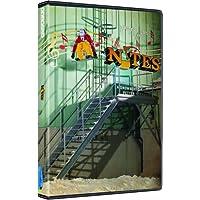 Ally Distribution Factor Films Notas Snowboard Dvd Europeo