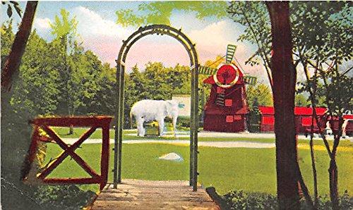 Benson Wild Animal Farm, Lucky Elephant Hudson, New Hampshire, NH, USA Postcard Post Card