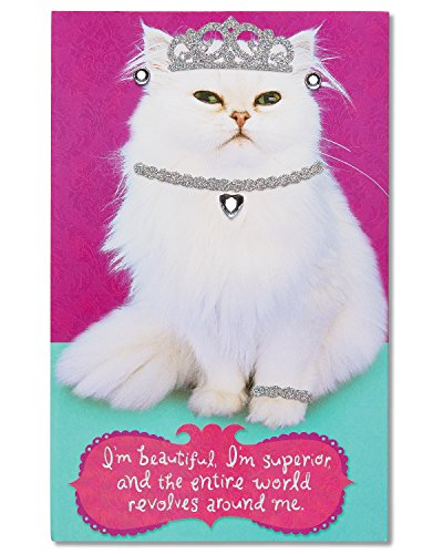 Cat Greeting Card Birthday (American Greetings Inner Cat Birthday Greeting Card with Rhinestones, Glitter, and Foil)