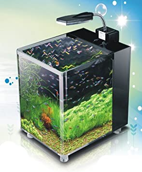 nano cube aquarium tropical fish tank 10 litres ledu0027s
