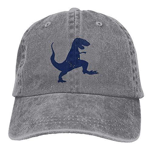 62301b09d3e6c Alaska Dinosaur T-rex Low Profile Plain Baseball Cap Washed Dad Hat Sports  Hat