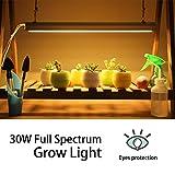 Monios-L T5 LED Grow Light, 2FT Full Spectrum