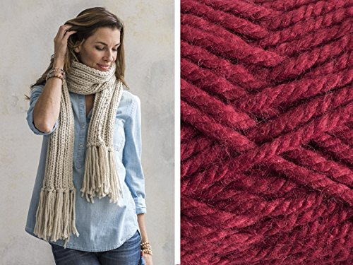 Craftsy Sprightly Quick and Easy Rib Knit Scarf or Cowl: Yarn and Printed Pattern (Ladies Cardinal Hook)