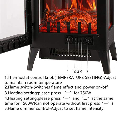 Wonlink Heater,2 Element Space Heater with Flame