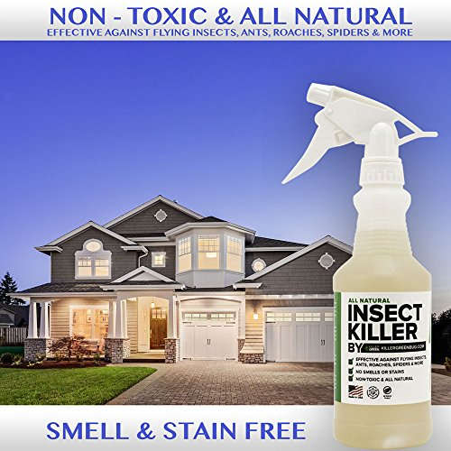 All Natural Non toxic Insect Killer Spray by Killer Green - 16 oz. - Kills on cockroaches, Ants, Mosquitos, Spiders. !00% Money Back Guarantee - Safe for People, Plants and Pets by Killer Green (Image #3)