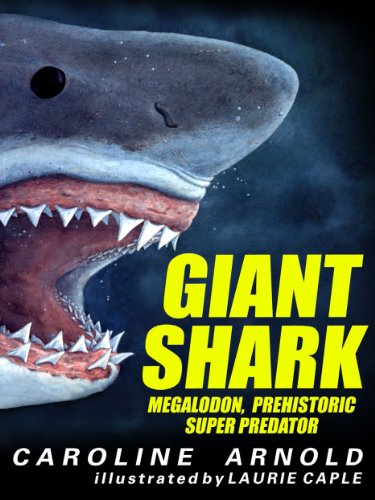 Giant Shark: Megalodon, Prehistoric Super - Alike Look Predator