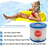 NISOI for Summer Waves Pool Filter Type D,for RX600