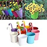 Go Hooked Metal Hanging Planter, Flower Pot for Balcony and Railing (Multicolour)