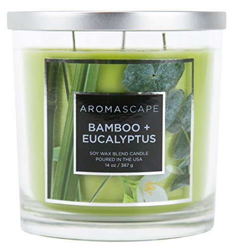 Aromascape 3-Wick Scented Jar Candle, Bamboo & Eucalyptus