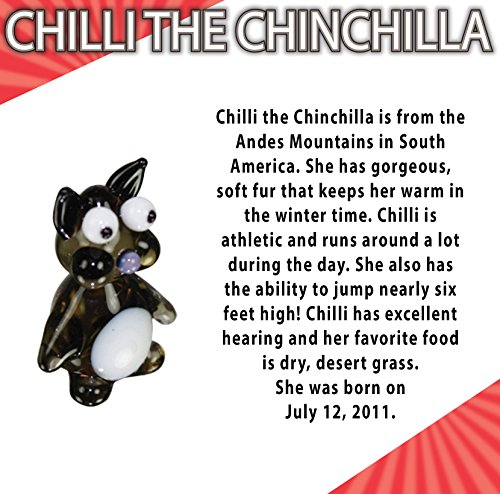 The 8 best chinchilla collectibles