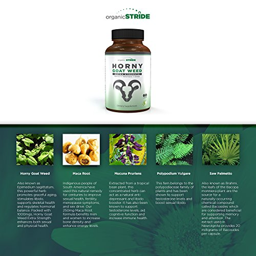 Extra Strength Horny Goat Weed Extract for Performance