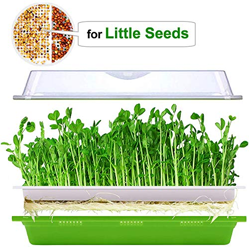 (Seed Sprouter Tray with Lid BPA Free Plastic Extra Small Holes for Little Seeds Sprouts Bean Grower Sprouting Kit)