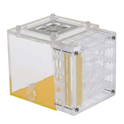 Serenable Acrylic Ant Nest Display Box Formicarium Moisturizing Water Tower Lair for Ant Feeding Science Educational: Pet Supplies