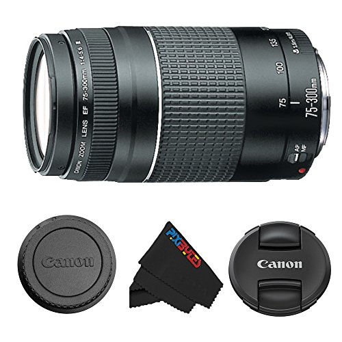 Canon EF 75-300mm f/4-5.6 III Telephoto Zoom Lens for Canon SLR Import & USA Cameras
