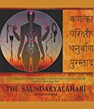 img - for The Saundaryalahari (Anandalahari) book / textbook / text book