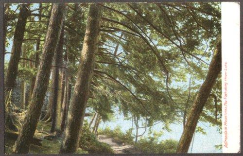 Mirror Lake Path Adirondacks NY undivided back postcard - Adirondacks Mirror Lake