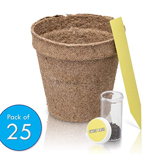 Ashbrook Outdoors Biodegradable Seed Starter Peat Pots - Large 3'' | 25 Pack of Gardening Pots for Herbs, Seeds, Flowers & Plants | Includes 25 Easy Label Tags & Bonus Basil Seeds | Full Growing Kit by Ashbrook Outdoors (Image #2)