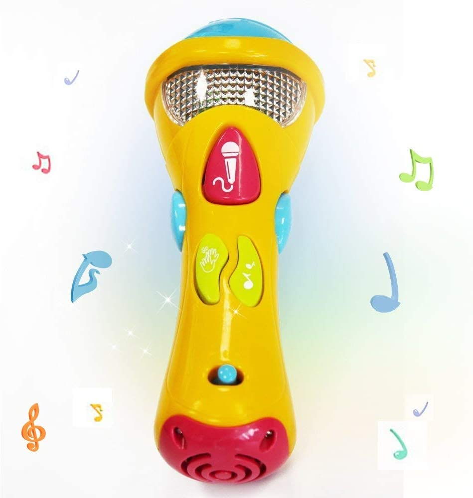 Wishtime Toddler Singing Karaoke Microphone for Recorder with Music and Light