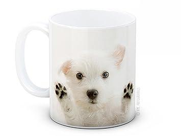West Highland Terrier blanco de perro cachorro - Westy café de alta calidad taza de té: Amazon.es: Hogar