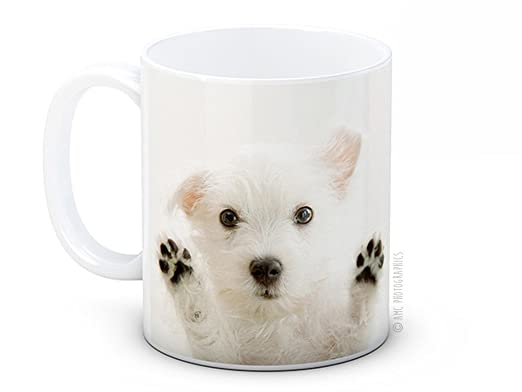 West Highland Terrier blanco de perro cachorro - Westy café de ...