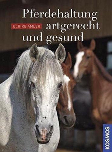 Pferdehaltung - artgerecht und gesund: Der richtige Stall für mein Pferd