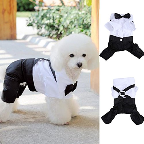 Coco*Store Puppy Pet Dog Cat Tuxedo Cute Prince Bow Tie Suit Costume Jumpsuit Coat Clothing (Cat Tuxedo Costume)