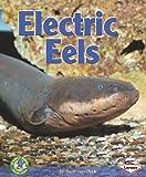 Electric Eels, Sara Van Dyck, 0822578867