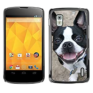Vortex Accessory Carcasa Protectora Para LG GOOGLE NEXUS 4 - Boston Terrier Bull French Bulldog Canine -