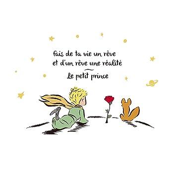 Le Petit Prince Citation Forumhulp