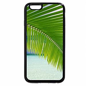 iPhone 6S Plus Case, iPhone 6 Plus Case, The Tree Stands Alone