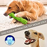 FunDiscount Dog Toothbrush Chew Toys, Non Toxic Rubber Bite Resistant Chew Toys for Aggressive Chewers, Pet Dental Care Brushing Sticks, Puppy Puzzle Interactive Toys Molar Stick